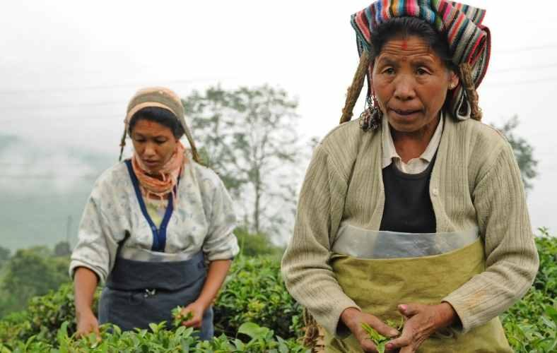 Women Farmers: The Invisible Labour Force Of India